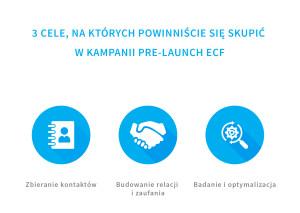 cele_kampani_pre_launch_crowdfunding_udziałowy